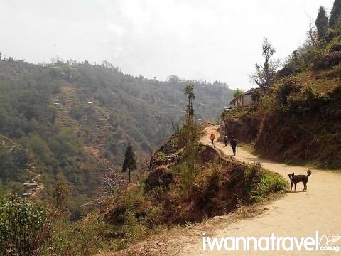 """""""Way in Srikhola"""" by Suvendra.nath"""