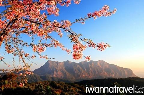 I_Chiang Dao_02